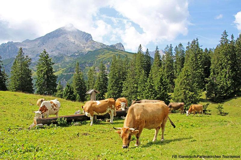Garmischin Alppitunnelmissa Adrian Matkat